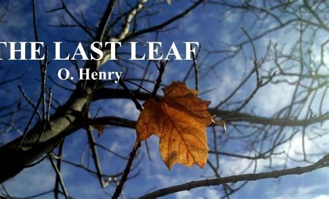 leaf   henry skyteach