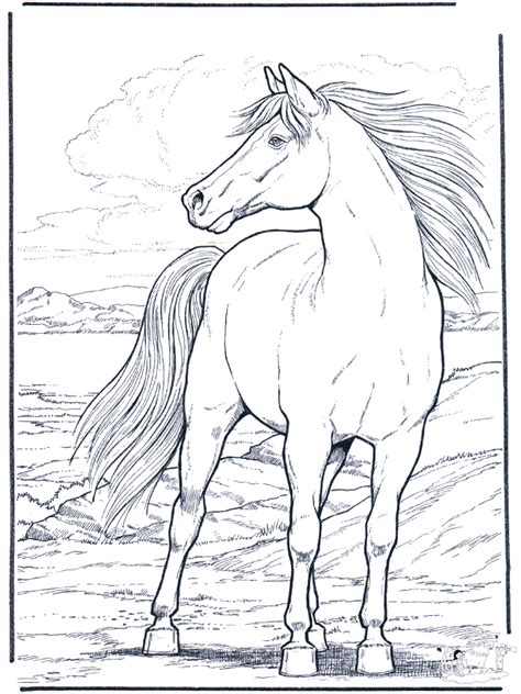 horse   wind horses