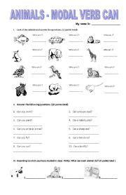 animals modal verb can esl worksheet by genial