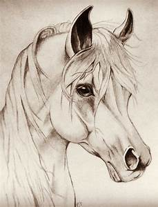 Best 25+ Pencil art ideas on Pinterest | Sketch ideas ...