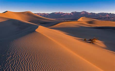 fonds decran desert mesquite dunes death valley sand