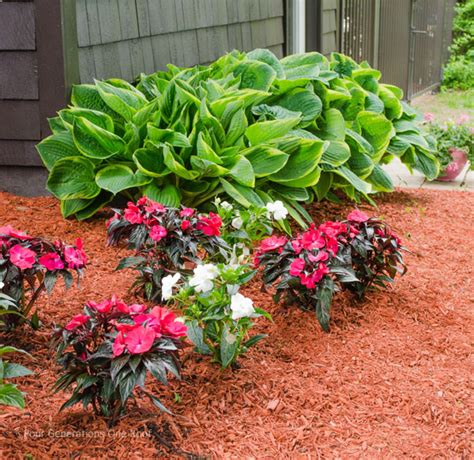 how to start a flower bed a flower bed makeover from start to finish featuring spectracide weed and grass killer how to