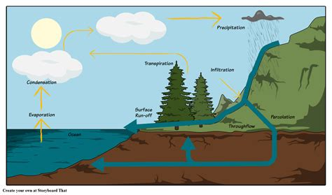 Diagram Of A Water by The Water Cycle Diagram Steps Pictures Activities