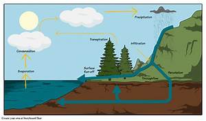 The Water Cycle Storyboard By Oliversmith