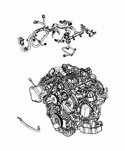 2014 Jeep Grand Cherokee Wiring  Injector   50 State Emissions   Powertrain  Mopar  Engine