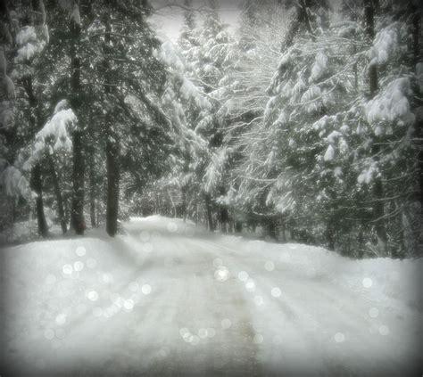 Winter Wonderland #PIcMonkey12 Christmas decorations for