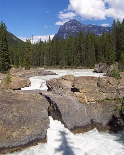 Natural Bridge over the Kicking Horse River : Field ...