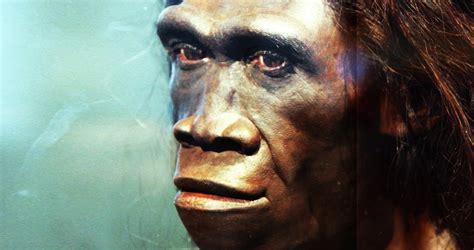800,000 Year Old Homo Erectus Footprints Found in Eritrea