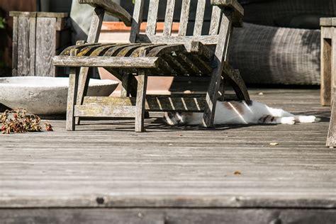 5 proc 233 d 233 s pour nettoyer sa terrasse en bois maison bois
