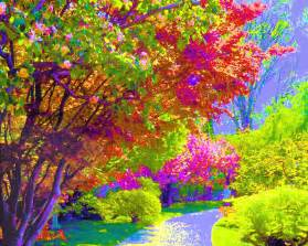 colorful trees painting background colorful background wallpapers
