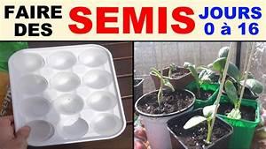Quand Semer Les Tomates : faire des semis de tomates courgettes betteraves salades ~ Melissatoandfro.com Idées de Décoration