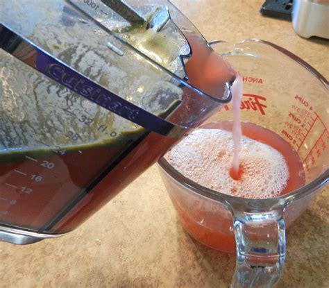 rhubarb juicer juice leave