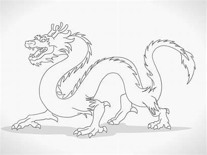 Dragon Draw Drawing Dragons Cartoon Step Wikihow