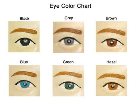 eye color chart eye color chart vocabulary source