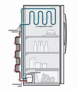 What Is The Function Of A Compressor In A Refrigerator