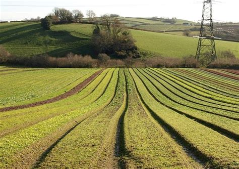 uk  unlock agricultural science potential  mp
