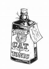 Potion Drawing Poison Bottles Getdrawings sketch template