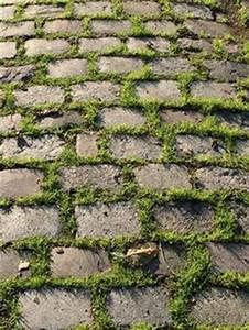60 idees creatives pour amenager son allee de jardin With allee de jardin originale 6 le pas japonais pour circuler dans son jardin mon