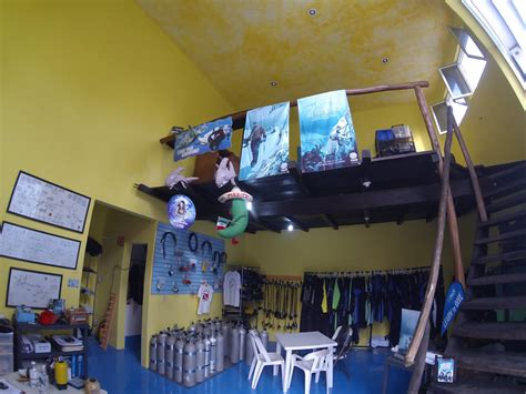 Best Dive Shop by Playa Scuba Diving Photo Gallery And Pictures