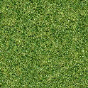 17 best images about grass on Pinterest   Grasses and Maps