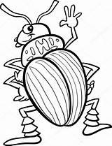 Beetle Escarabajos Kleurplaat Kever Aardappel Kolorowanka Owad Owady Insekten Stonka Komar Izakowski Ziemniak Insectos Malvorlagen Fototapeten Fototapeta Coloradokever Prace Ziemniaczana sketch template