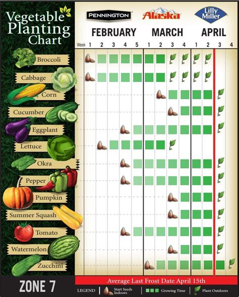 planting zone vegetable vegetables garden gardening chart plant winter indoor growing seeds zones times start calendar fall seed 7b tips