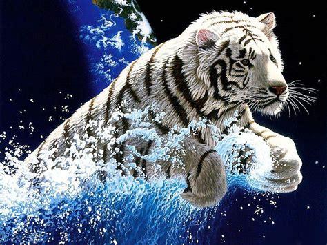 Cool Tiger Wallpapers Wallpaper Cave