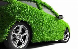 Green grass on car amazing photos HD Wallpapers Rocks