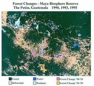 The Petén, Guatemala - Forest Changes