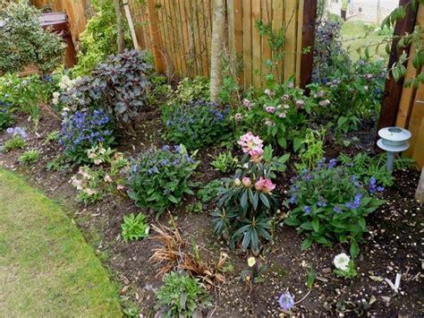 border plants shade shade plants shady border gardening and the great outdoors pint