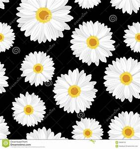 Vector Seamless Background With Daisy Flowers Stock Vector ...