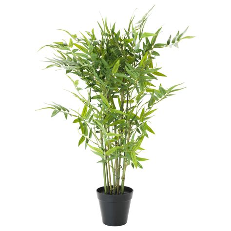bamboo tree plant fejka artificial potted plant bamboo 12 cm ikea