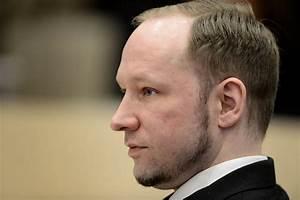 Norway killer Breivik grew in toxic isolation, book says ...  Anders