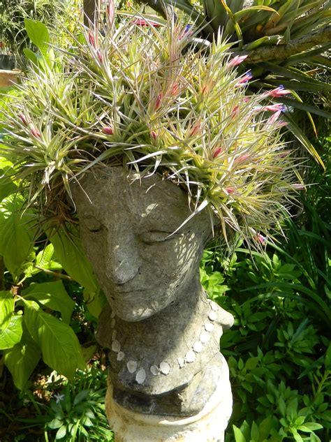 dazzling head planters  add  fun   garden