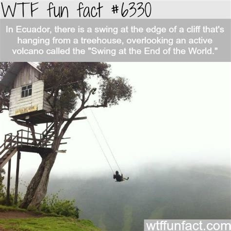 Swing Facts best 25 vacation humor ideas on work humor