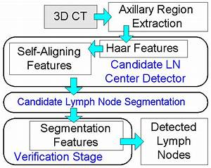 Diagram Of The Axillary Lymph Node Detection System