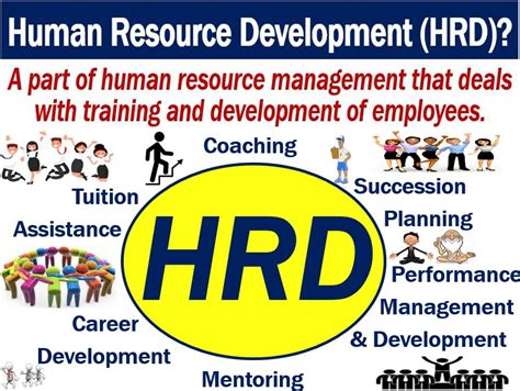 Human Resource Development (hrd)  Definition And Meaning. Plastic Gutters Vs Aluminum Chimney Sweep Dc. How Do I Know I Have Add Ap Biology Lab Bench. Emeritus Sandy Springs Dashers Auto Insurance. Nagasaki International University. Debt Consolidation Reviews Bbb. Online Undergraduate Courses. Apartments In Melbourne For Rent. Template To Create Website Points In Mortgage