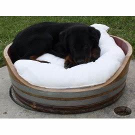Panier Chien Design : tonneaux niche pour chien juls design ~ Teatrodelosmanantiales.com Idées de Décoration