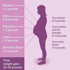 27 Weeks Weight Gain Chart Pin On Good To Know