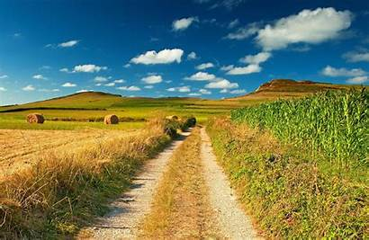 Country Desktop Backgrounds Wallpapers Road Field Nature