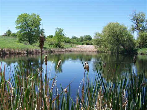 size of pond file two ponds nwr jpg wikimedia commons