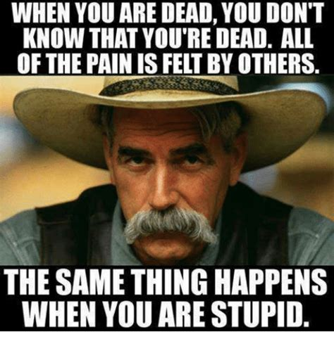 You Re Stupid Meme - when you are dead you don t know that you re dead all of the painis felt by others the same