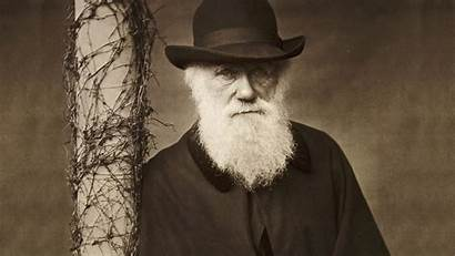 Darwin Charles Wallpapers Documentary Background 1809 1882