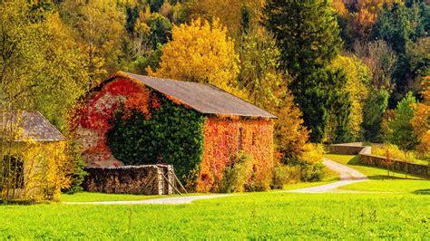 Autumn 4k Uhd Wallpapers by Autumn Building Grass Hd 4k Wallpaper