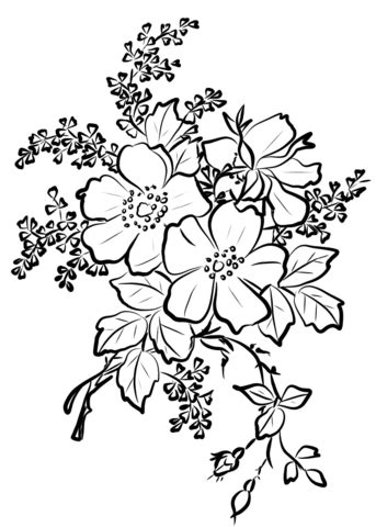 Dog Rose Flowers coloring page Free Printable Coloring Pages
