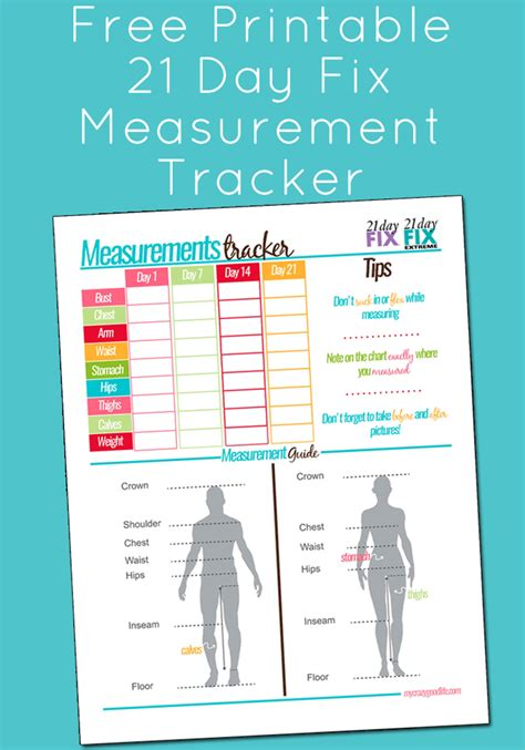 day fix measurement tracker  compare
