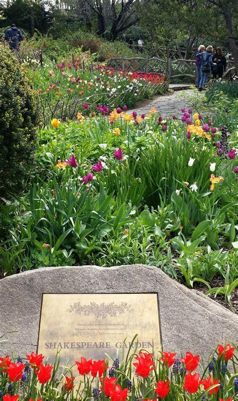 Photo entry: Shakespeare Garden