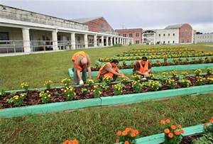IFAS programs train inmates for life 'outside'