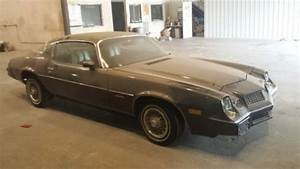 Purchase Used 1981 Chevrolet Camaro Berlinetta Coupe 2