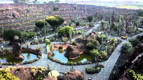 guatiza jardin de cactus kaktusowy ogrod botaniczny